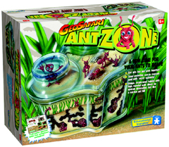 GeoSafari - Ant Zone