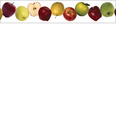 Apples Photo Border
