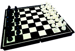 Magnetic Chess